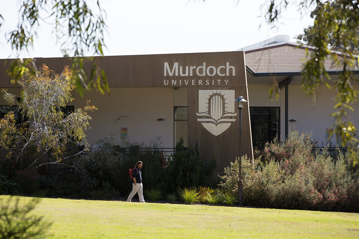Khuôn viên xanh mát bên trong trường Murdoch